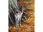 Acrylic painting of Fallow Deer
