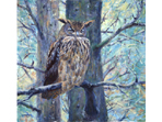 """Soft & Sharp"" painting of an Eagle Owl  in acrylics"