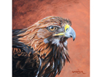 Golden Brown, painting of a Golden Eagle