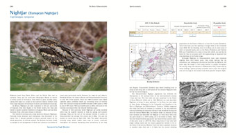 Nightjar pages from 'The Birds of Gloucestershire'