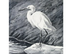 Egret painting in watercolour