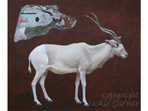 Addax painting in watercolour