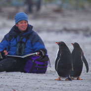 Meeting penguins in the Falklands