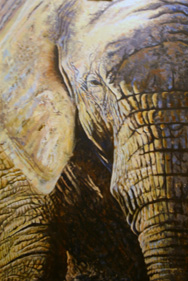 'Eye of the Beholder' painting of African Elephant in acrylics