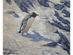 Acrylic painting of Rockhopper penguin